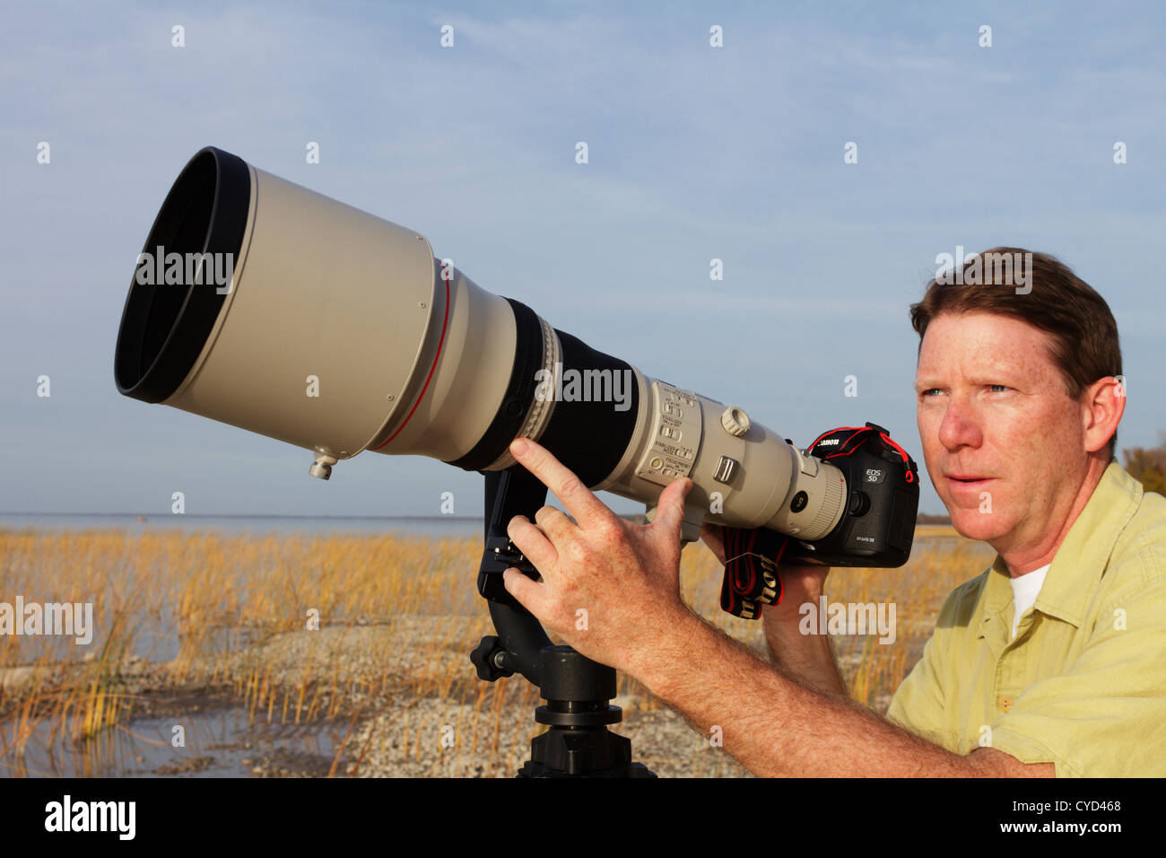 Professional photographer with a super telephoto lens watching for birds to photograph. - Stock Image