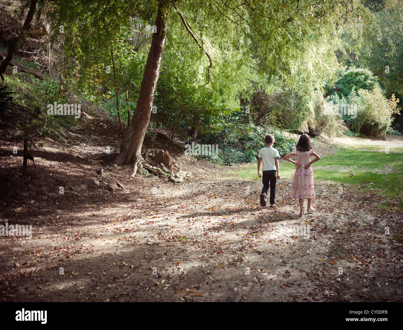Boy and girl walk along woodland path in afternoon sun - Stock Image