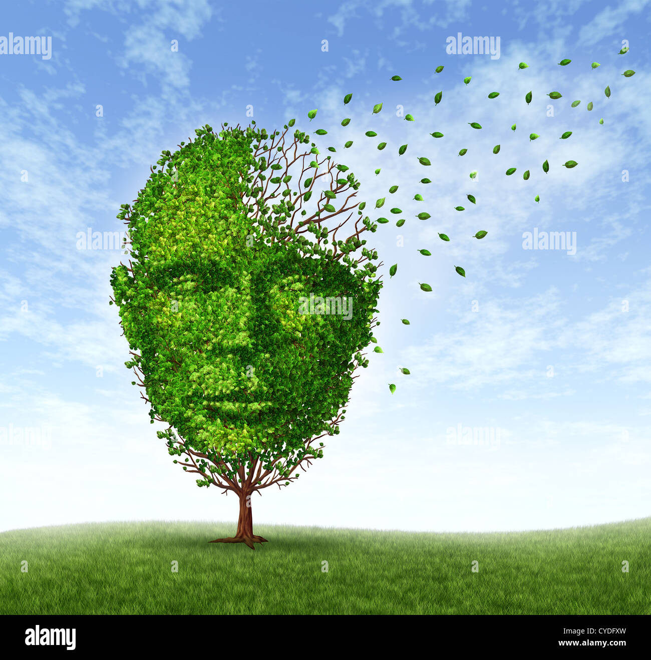 Human dementia problems as memory loss due to age and Alzheimer's disease with the medical icon of a tree in - Stock Image