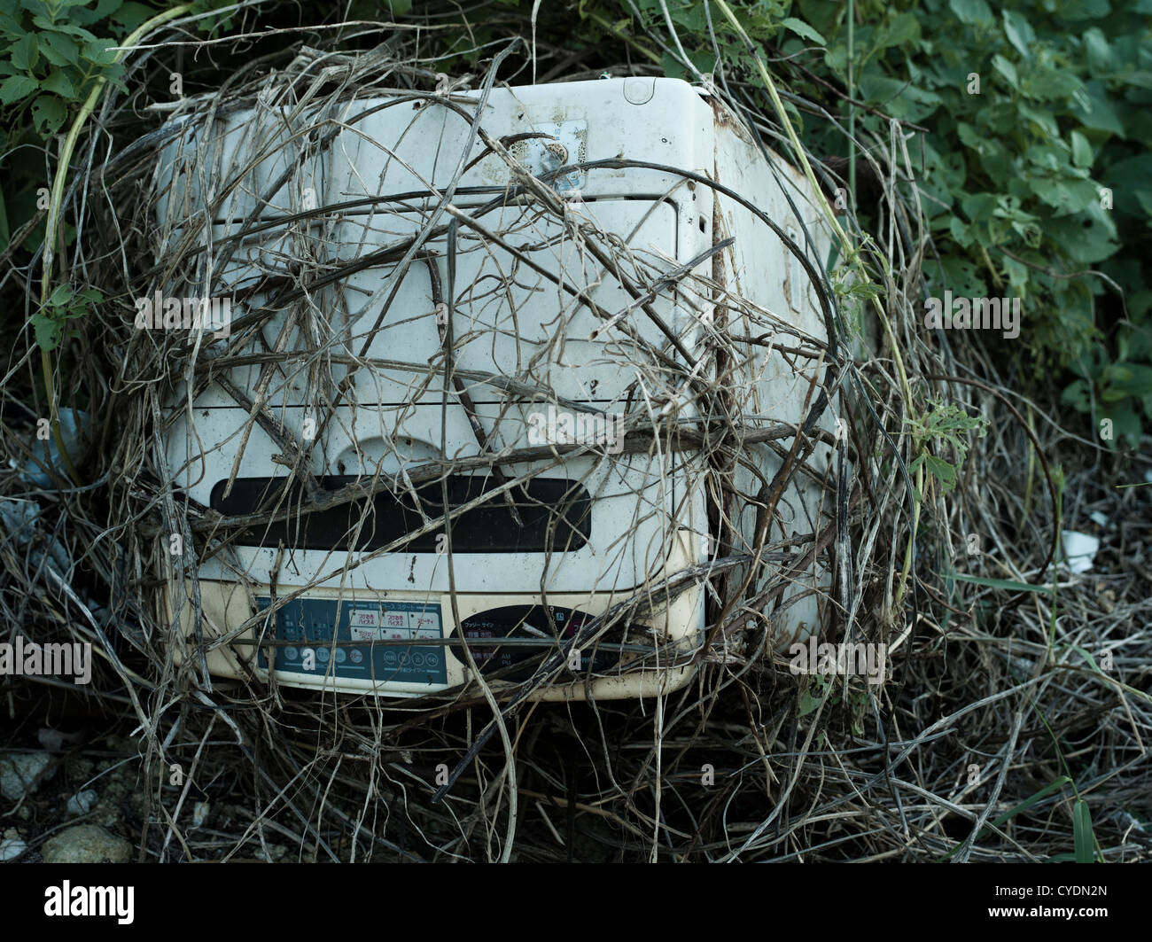 Washing machine dumped in the undergrowth beside a road and slowly enveloped by vegetation. - Stock Image