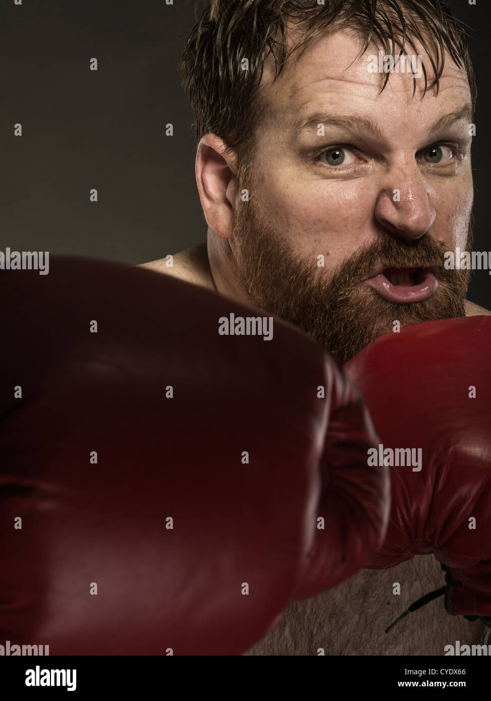 Heavyweight Boxer with red gloves and beard - Stock Image