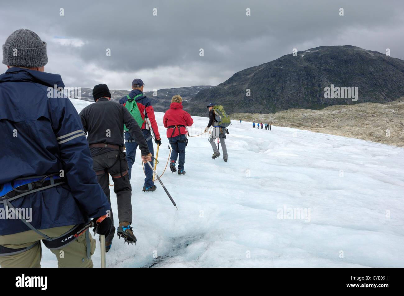 Glacier hike, Austdalsbreen glacier, Jostedalsbreen icecap, Sogn og Fjordane, Norway - Stock Image