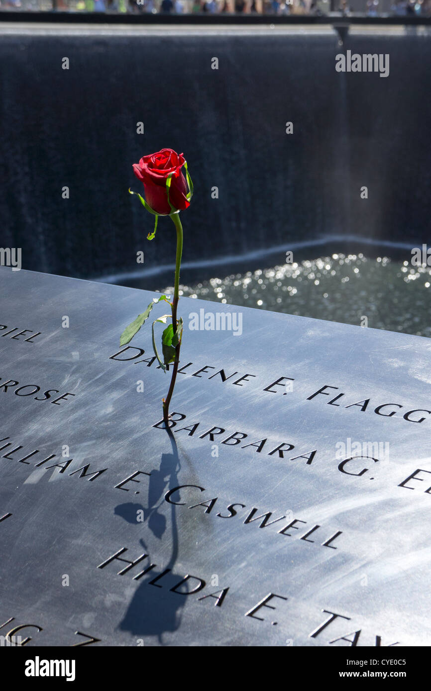 single rose at world trade 9/11 Memorial tribute of remembrance, New York, USA - Stock Image