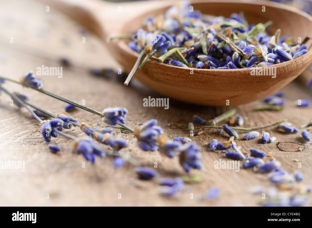 Lavender dry flowers on the oak table - Stock Image