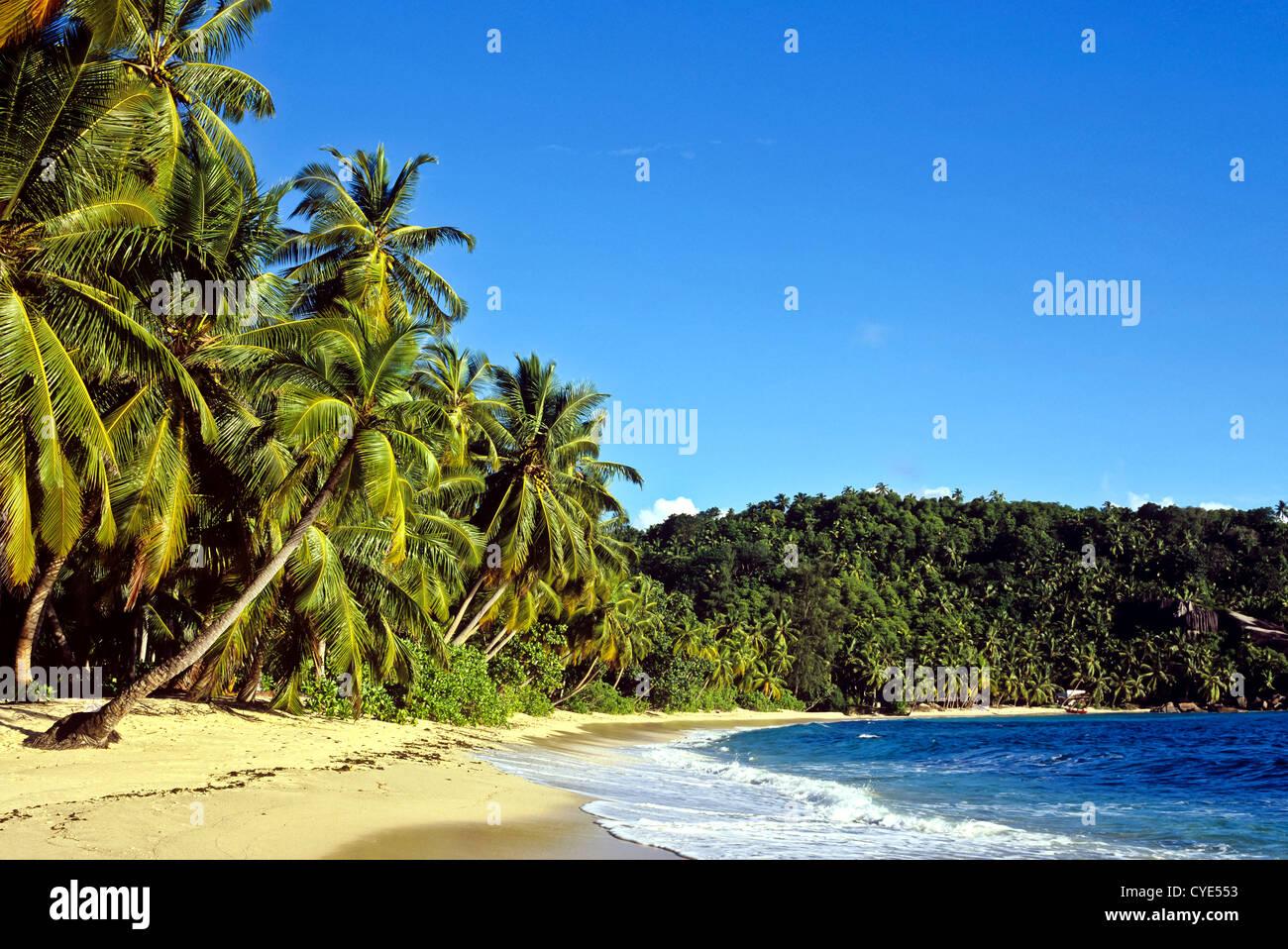 8288. Anse Takamaka, Mahe, Seychelles - Stock Image