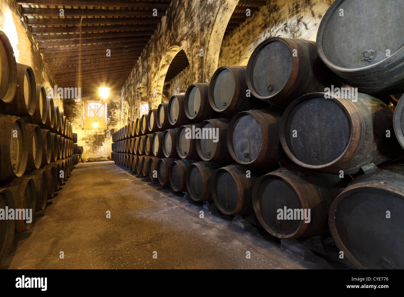 Old wine celler with wooden barrels - Stock Image