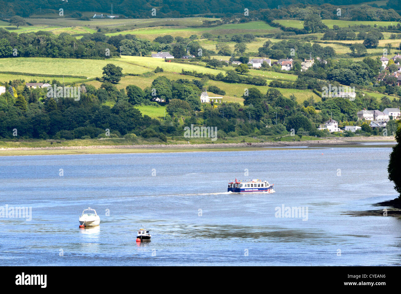 Sightseeing cruise boat heads up the Conwy valley after leaving Conwy quayside Clwyd North Wales UK - Stock Image