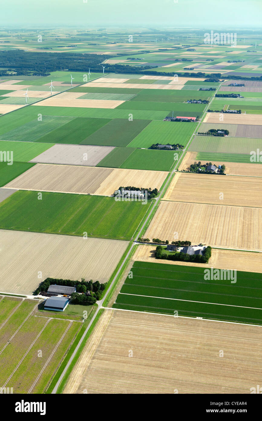 The Netherlands, Emmeloord, Farms and polder landscape. Aerial. - Stock Image