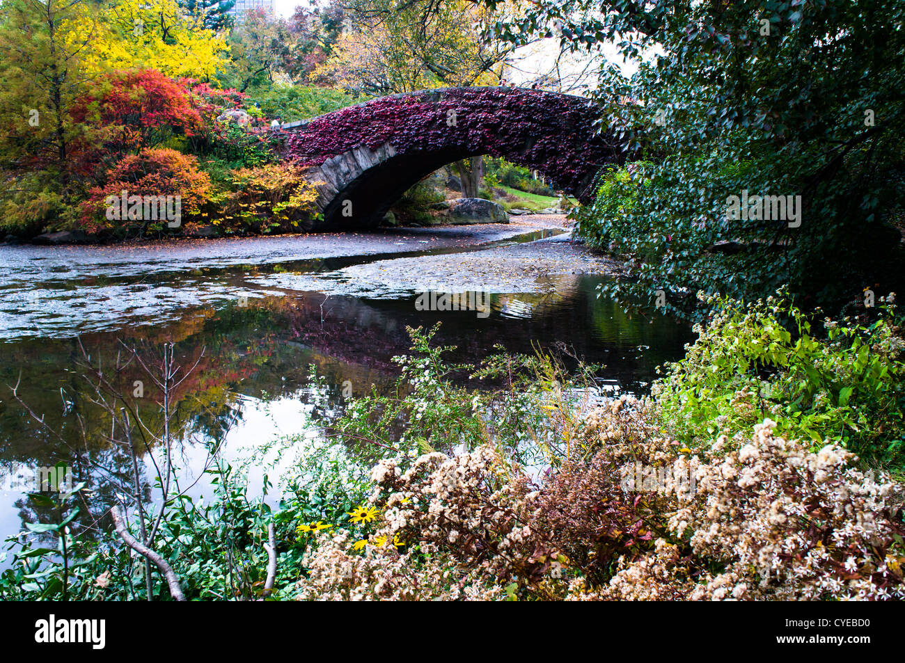 Autumn colors of trees decorate the Gapstow Bridge in Central Park in New York City. The picture was taken two days - Stock Image
