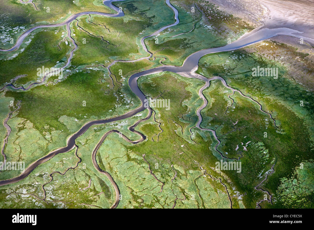 Schiermonnikoog Island belonging to Wadden Sea Islands. UNESCO World Heritage Site. Aerial. Marsh land, mud flats. - Stock Image