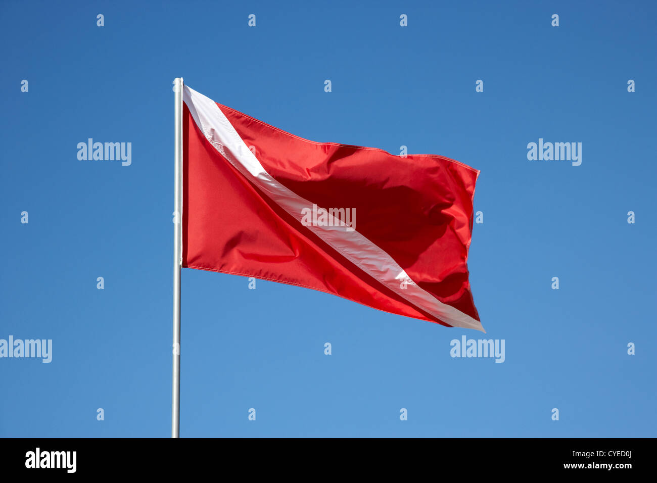 red and white diver down flag flying against blue sky florida keys usa - Stock Image