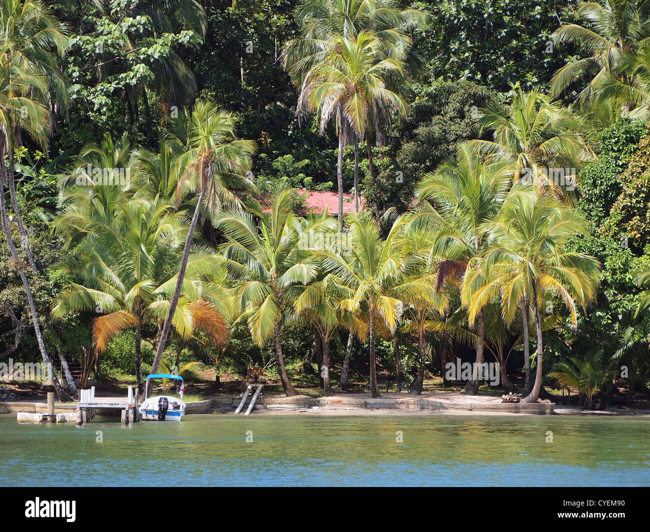 Private beach with lush vegetation on an island in the Caribbean sea - Stock Image