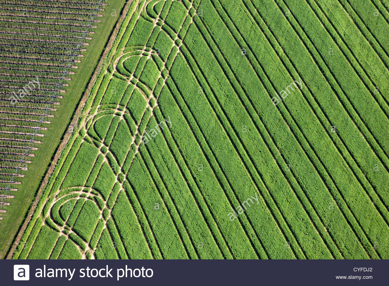 The Netherlands, Valkenburg, Farmland tractor patterns. Aerial. - Stock Image