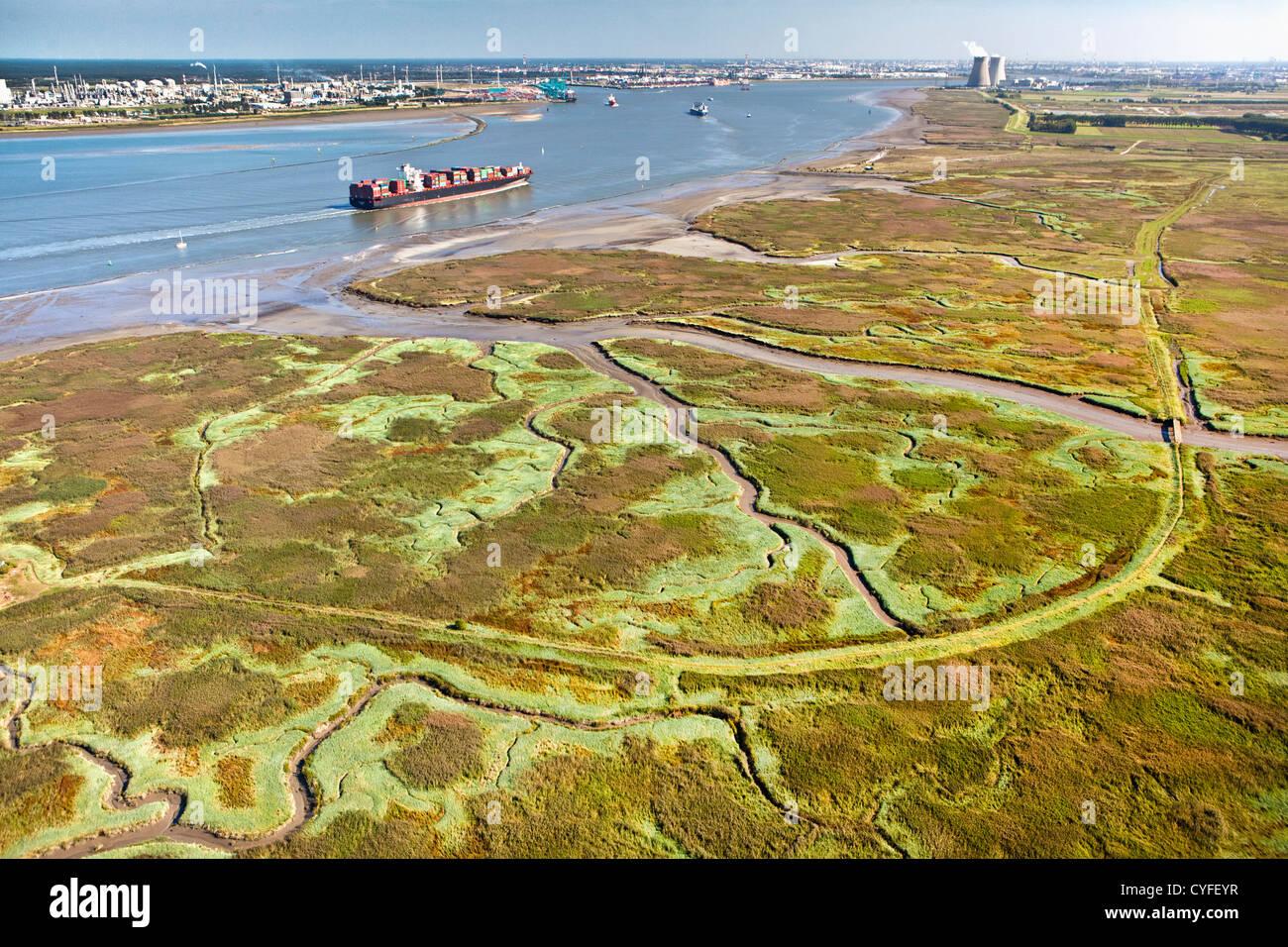 The Netherlands, Nieuw Namen, Container boat in Westerschelde river. Industrial area of Antwerp ( Belgium ) and - Stock Image