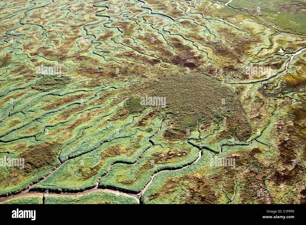 The Netherlands, Nieuw Namen, Westerschelde river. Tidal marshland. Aerial. - Stock Image