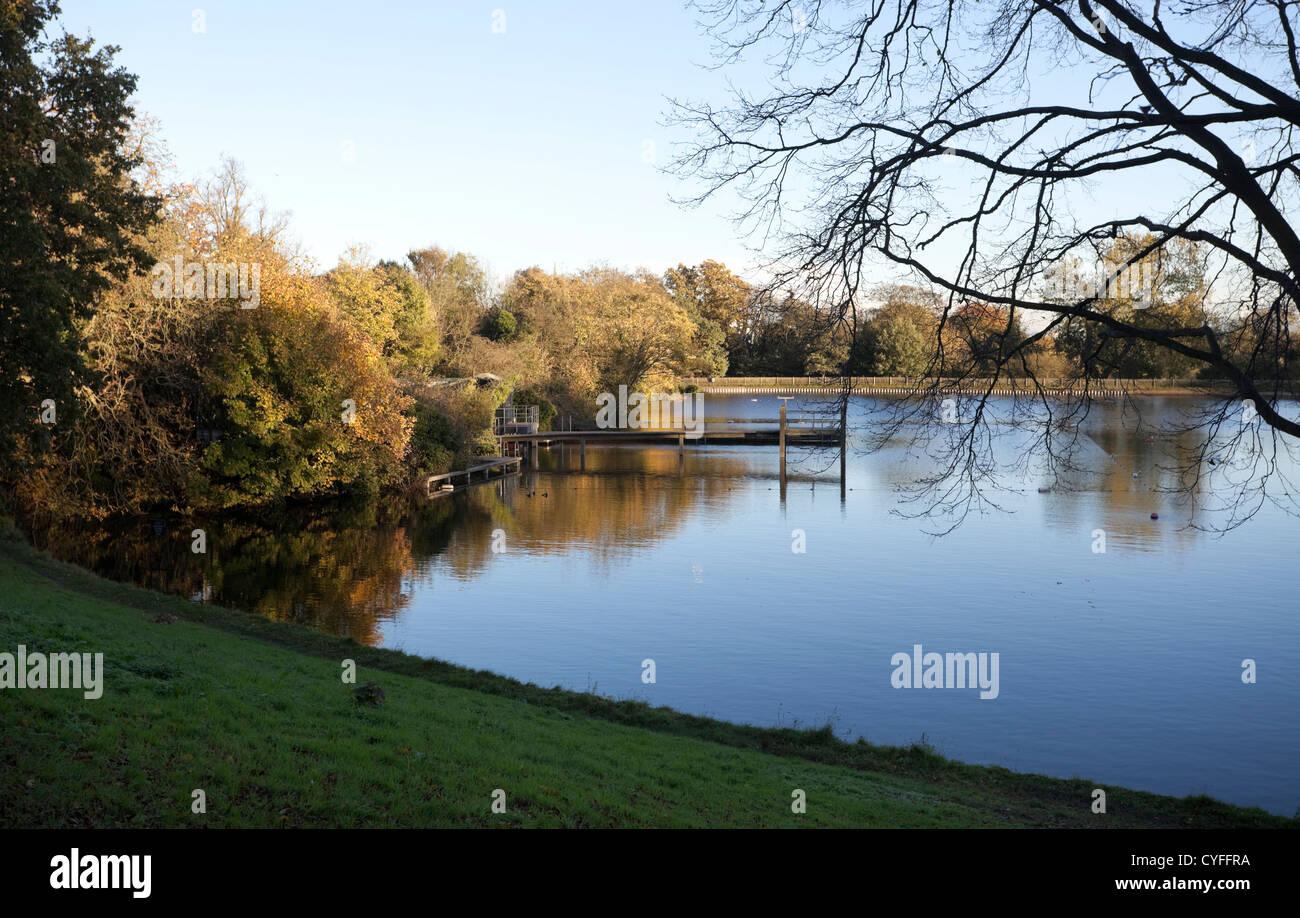 Hampstead Heath pond on an autumn afternoon, England, UK - Stock Image