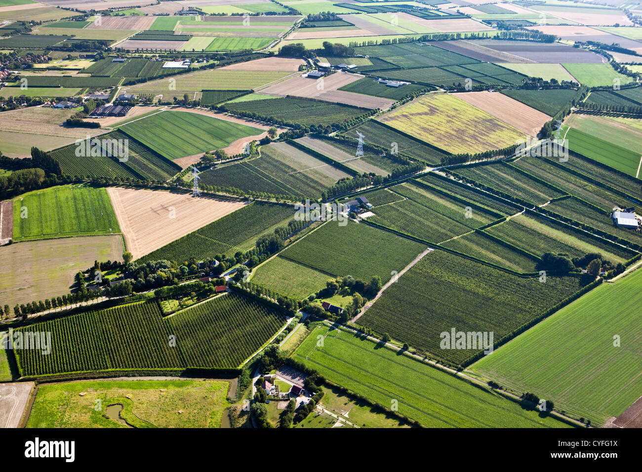 The Netherlands, Kloosterzande, Country side. Farms and farmland. Aerial. - Stock Image