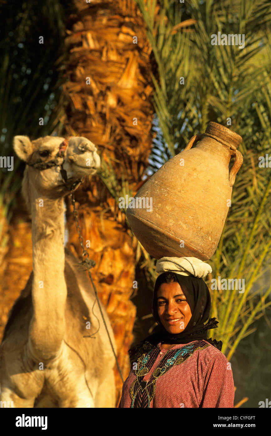 Egypt, Nile river, Luxor, West Bank, Woman transporting water in jar and camel - Stock Image