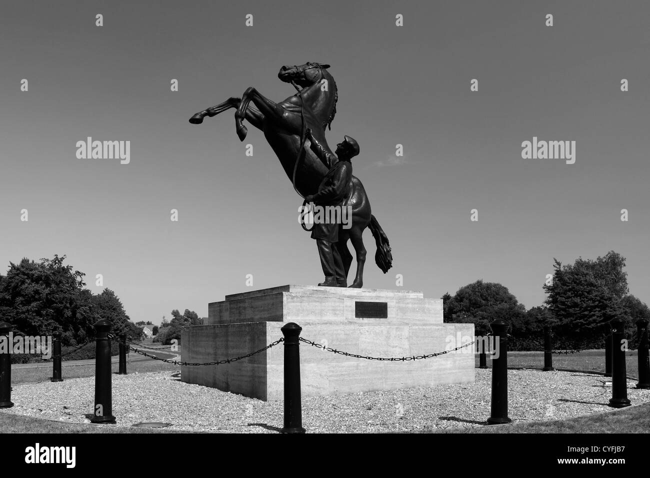 Black and White image,The Newmarket Stallion statue by Marcia Astor and Allan Sly, at Newmarket racecourse, Suffolk, - Stock Image