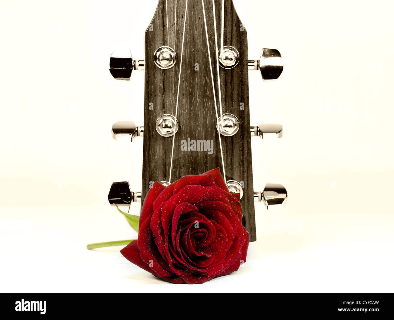 an acoustic guitar and a red rose in the foreground - Stock Image