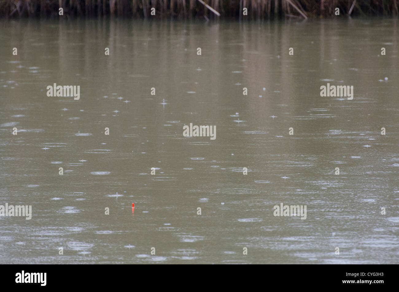 Raining when fishing - Stock Image