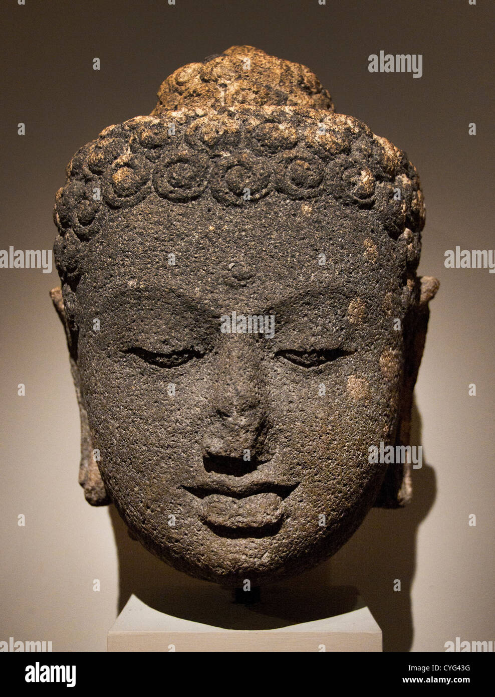 Head of a Buddha Central Javanese 9th century  Indonesia Java Andesite 35 cm Borobudur style - Stock Image