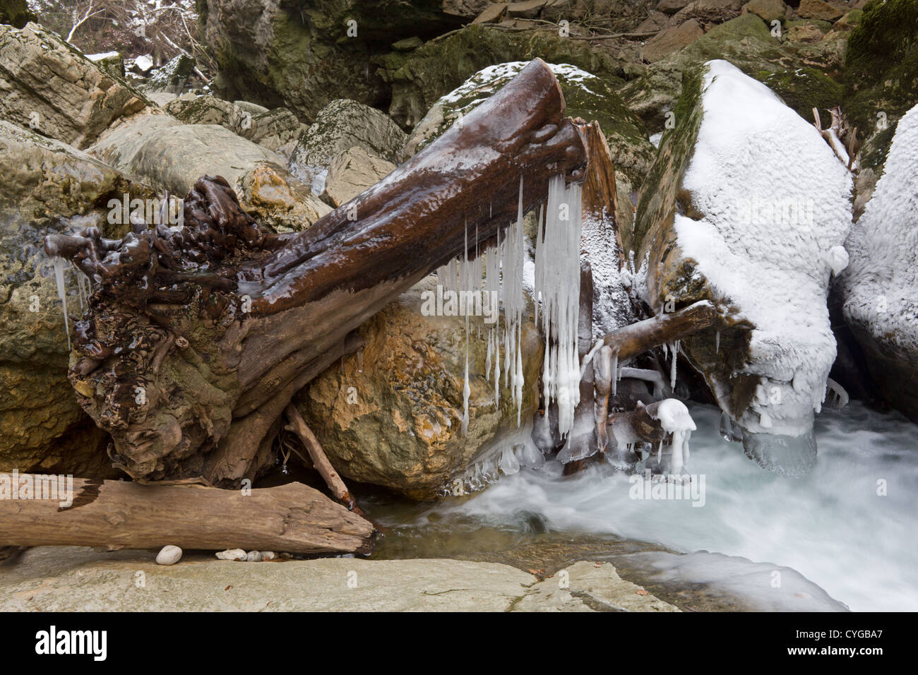 Icy frozen log in the river creek Gorges de l'Areuse - Stock Image