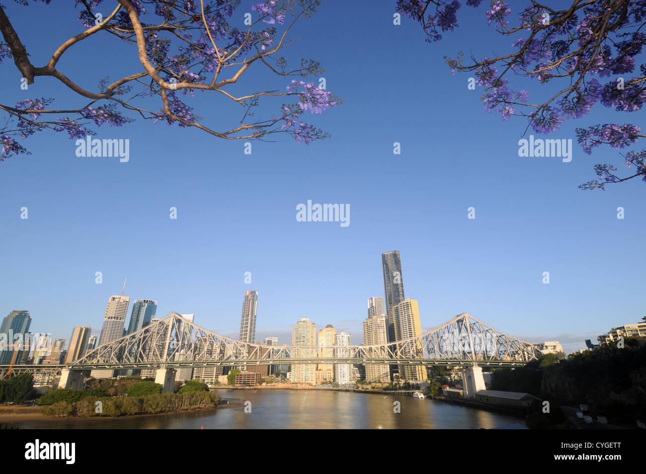 View of Story Bridge and Brisbane River and CBD with flowering jacarandas in spring, Queensland, Australia. No PR - Stock Image