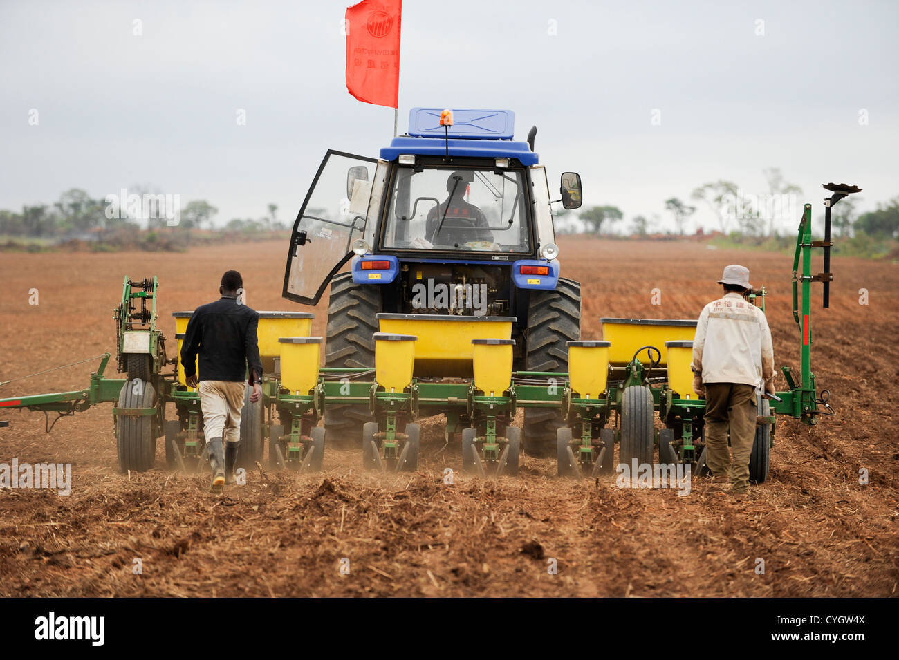 Africa ANGOLA Malanje Black Stone Farm, a 20.000 hectare large farm of chinese company CITIC and GESTERRA, maize - Stock Image