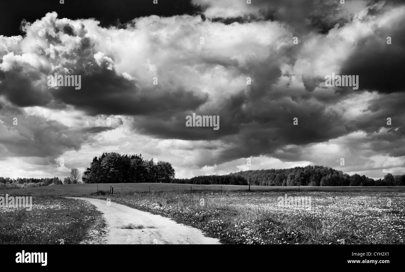 Black-white landscape. Cloudy sky, field and rural road. - Stock Image