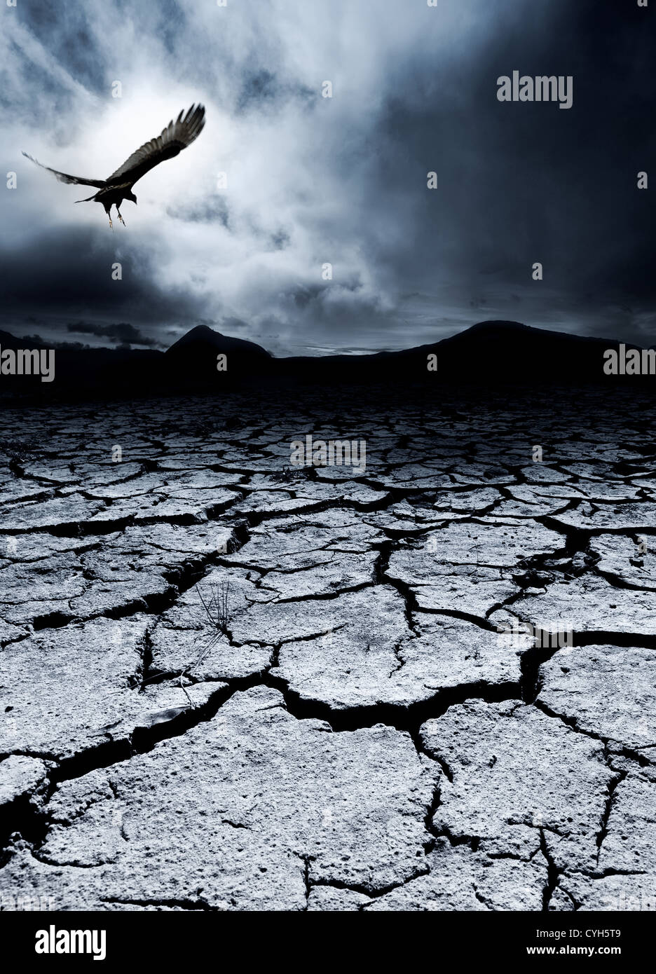 A bird flies over a desolate landscape - Stock Image