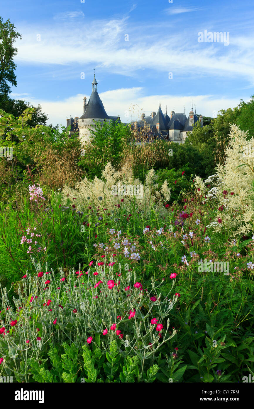 Bed with perennials (Lychnis coronaria, Stippa gigantea, Persicaria polymorpha…) and roofs of the castle, Chaumont - Stock Image