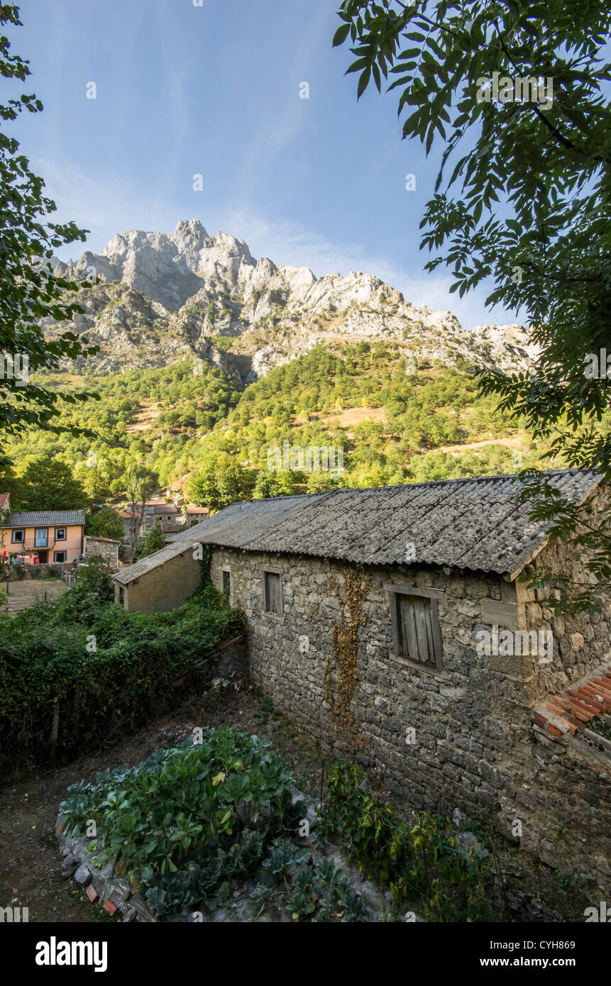 Cain in Picos de Europa National Park, Reserve of the Biosphere. Leon (Spain) - Stock Image