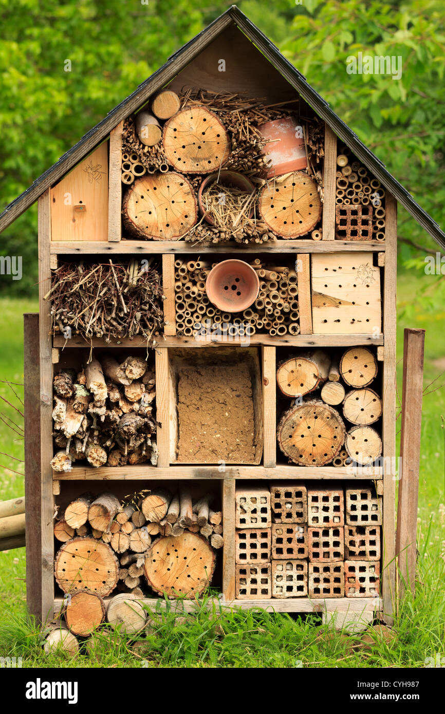 shelter for insects // nichoir à insectes - Stock Image