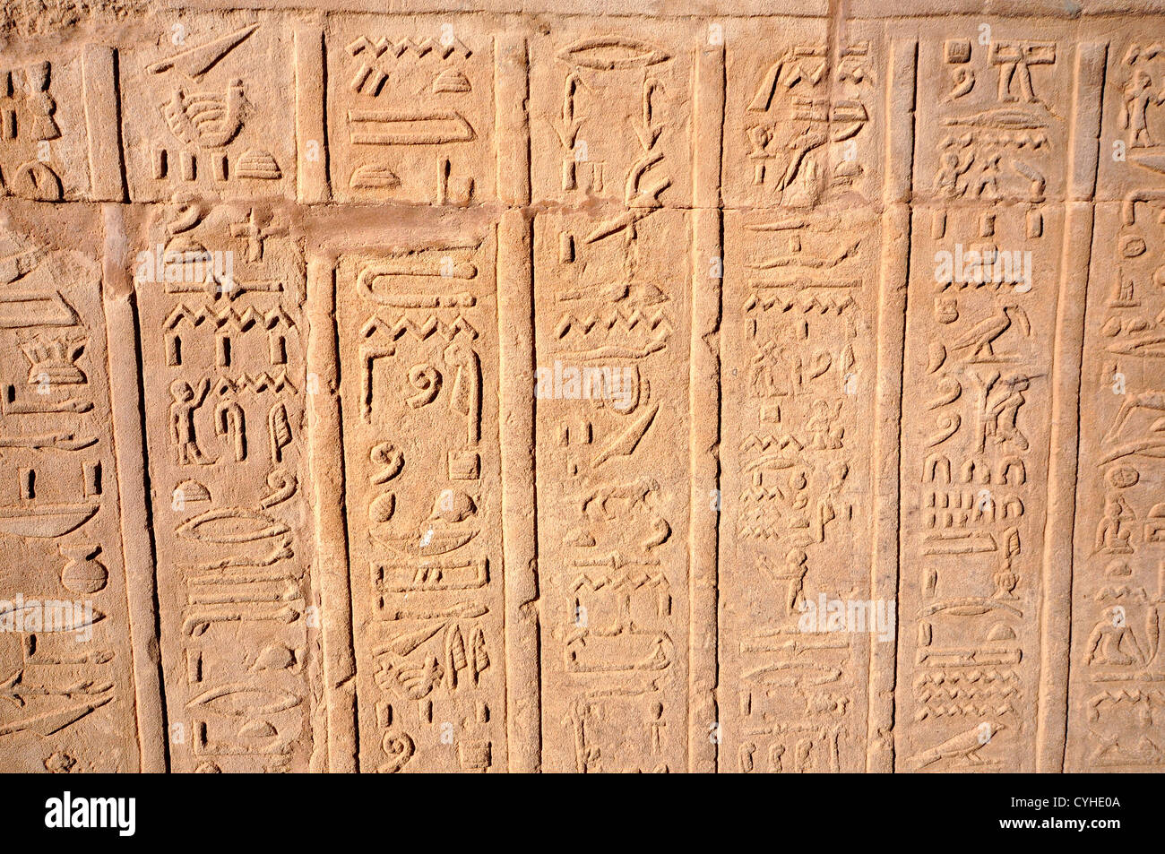 Hierogliphic scripts engraved on a wall - Stock Image