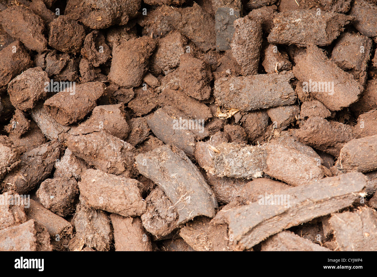 Pieces of dried peat - Stock Image