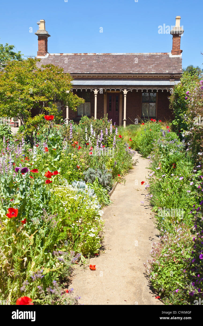 Australian country cottage green plants, poppies and flowers up the garden path with blue sky. historic house and - Stock Image