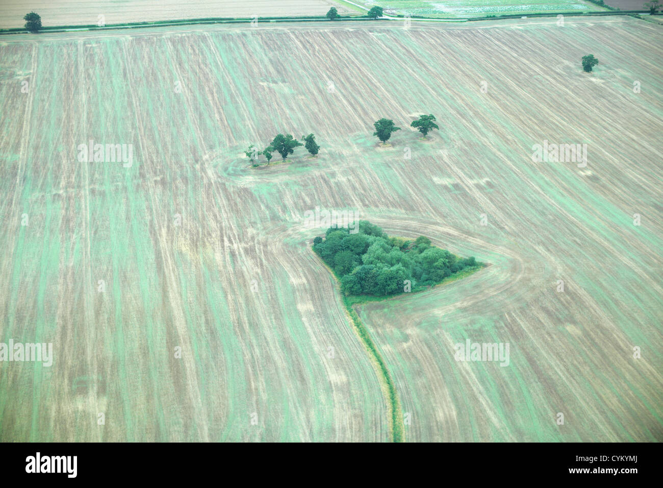 Aerial view of tilled field with trees - Stock Image