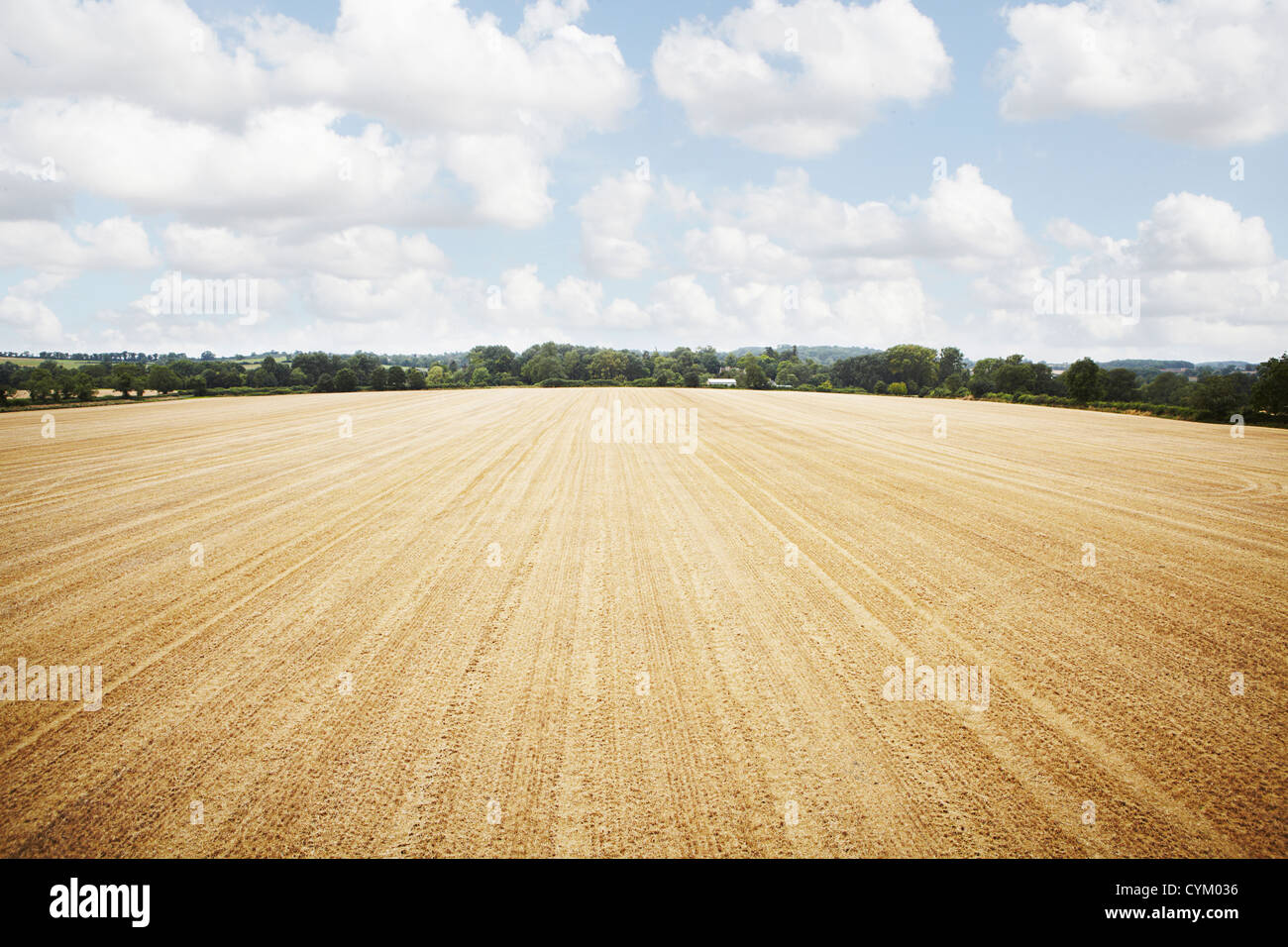 Aerial view in tilled crop field - Stock Image