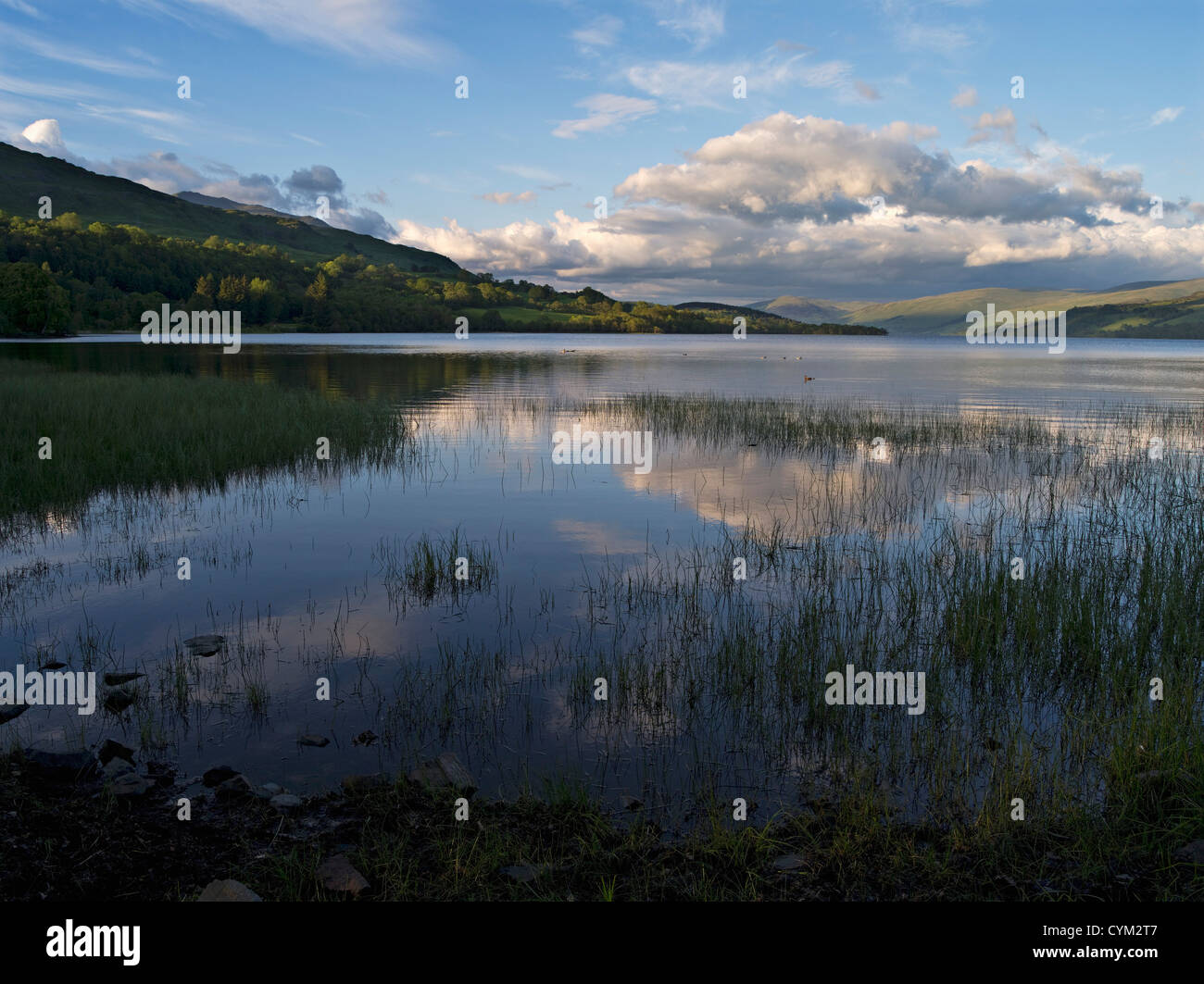 Soft evening light on still lake waters with reeds and distant headlands - Stock Image