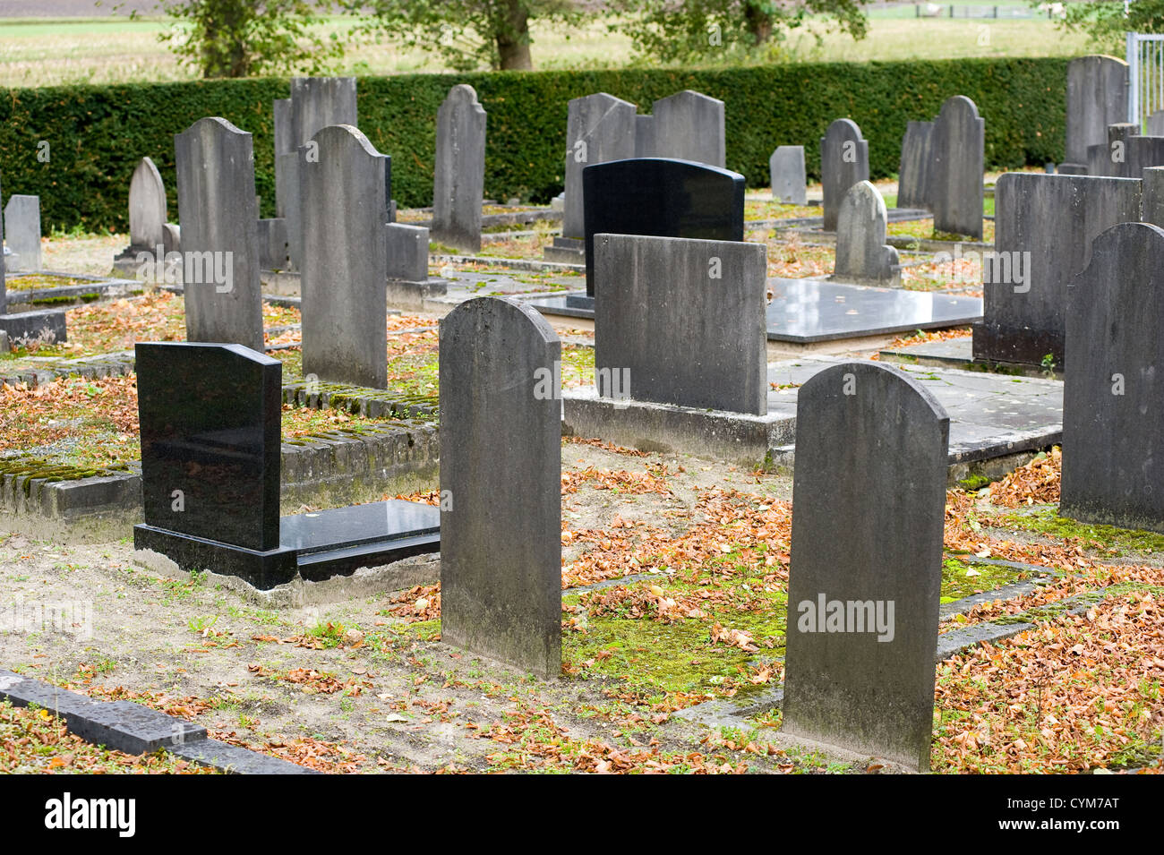 Different tombstones on a graveyard in the autumn - Stock Image