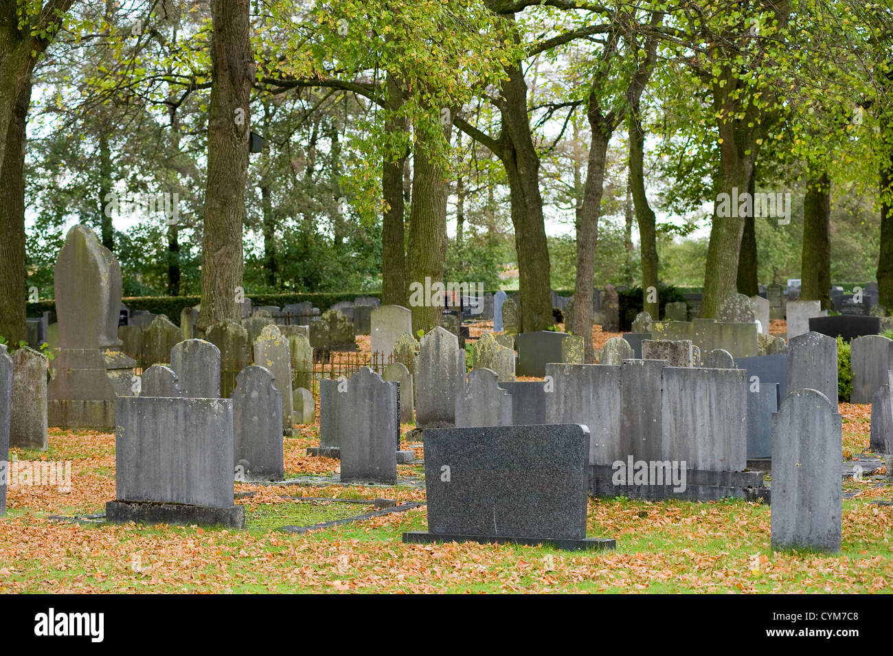 Several tombstones on a graveyard - Stock Image