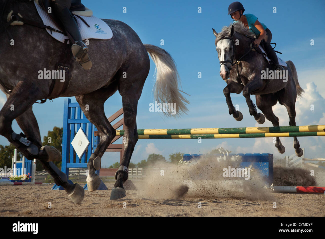 A rider gets airborne while practicing for an equestrian event. - Stock Image