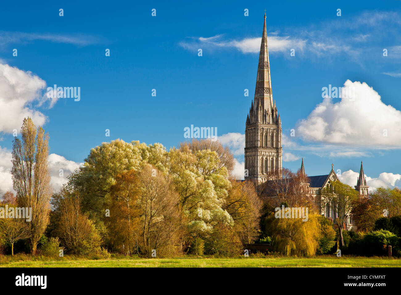 An autumn view of the spire of medieval Salisbury Cathedral, Wiltshire, England, UK across the Harnham water meadows. - Stock Image