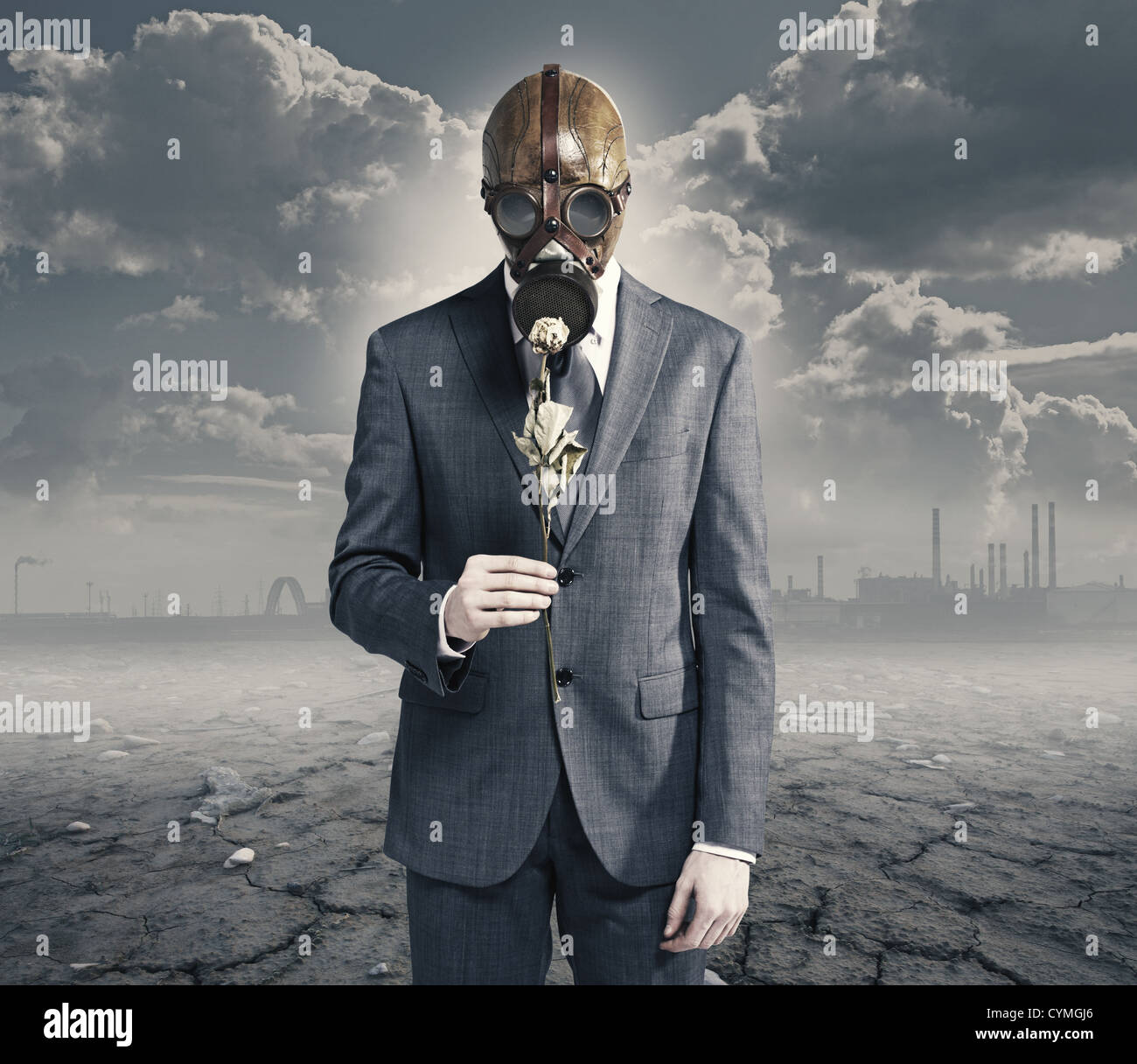businessman with dried rose: concept polluted environment - Stock Image