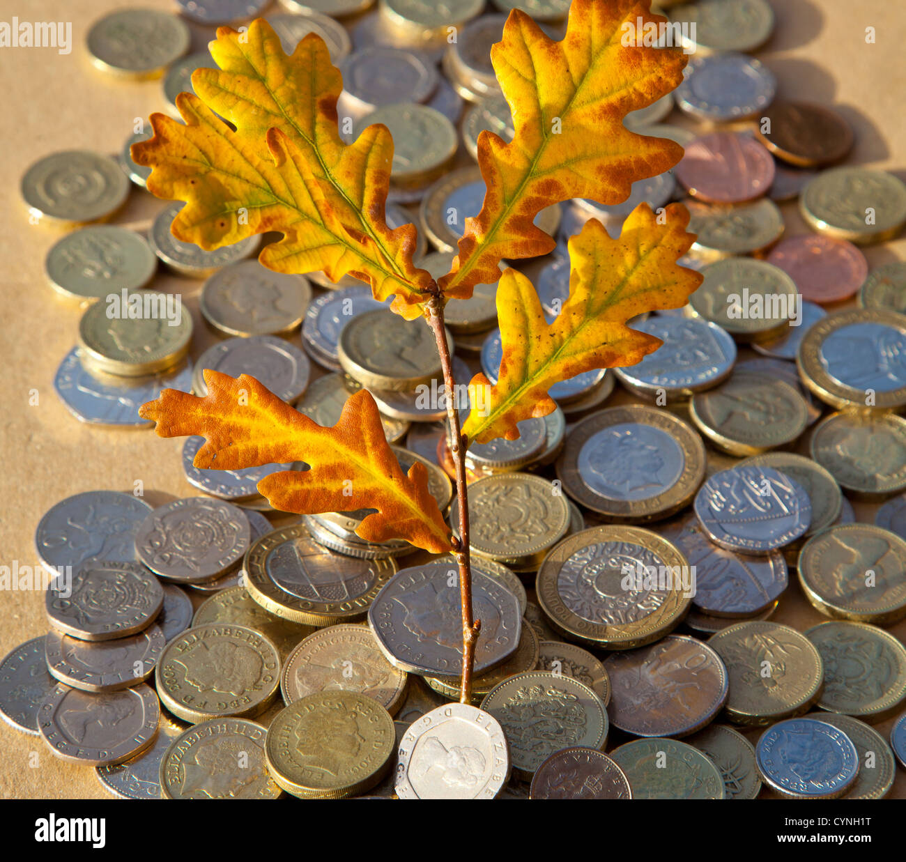 Autumn leaves in pile of coins - Stock Image