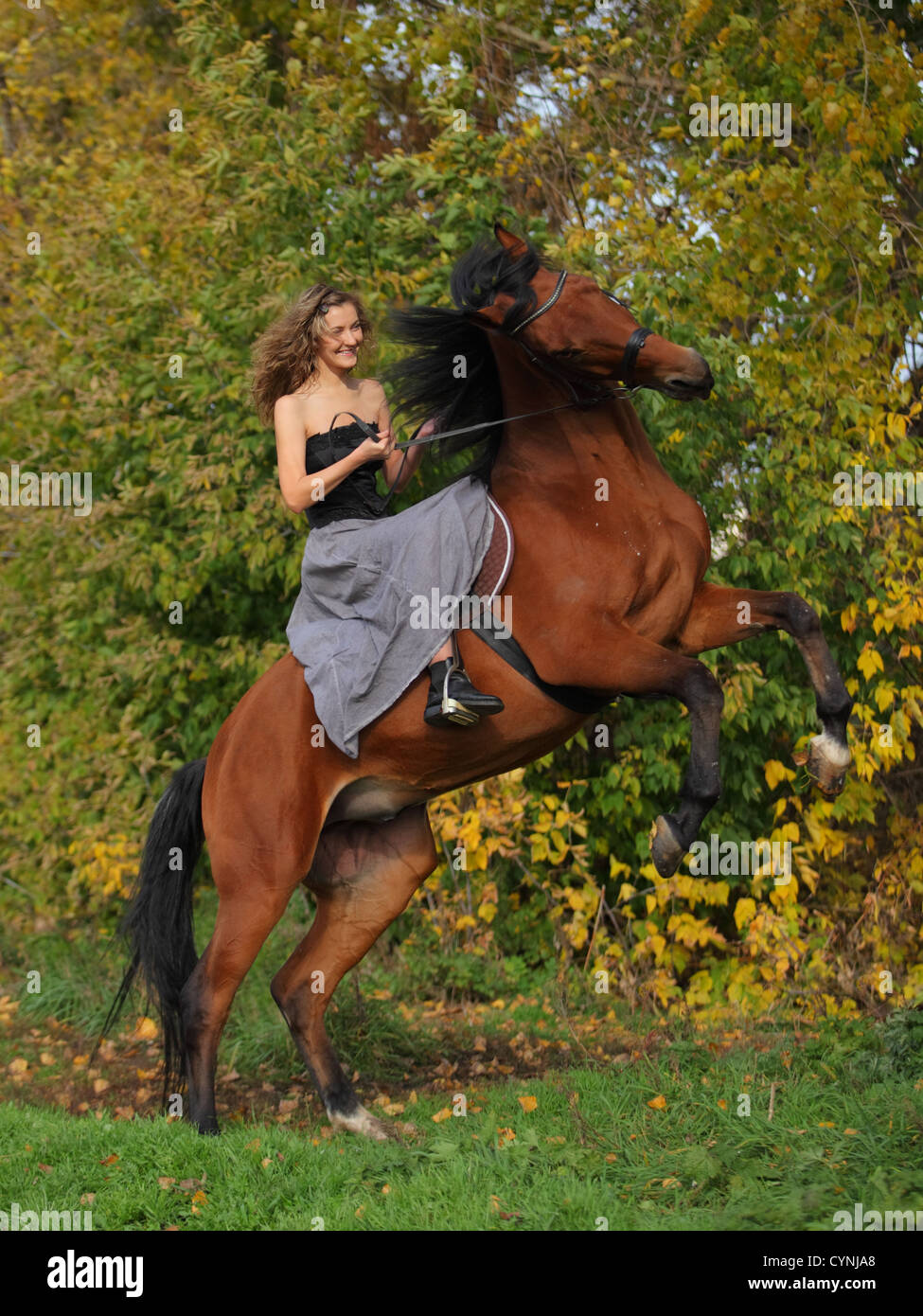 Cowgirl in vintage dress sitting on a rearing horse - Stock Image