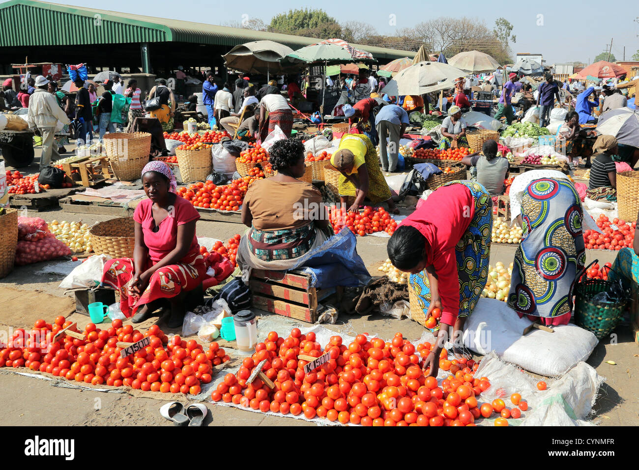 Female vendors with displays of vegetables at the Old Soweto market in Lusaka, Zambia - Stock Image