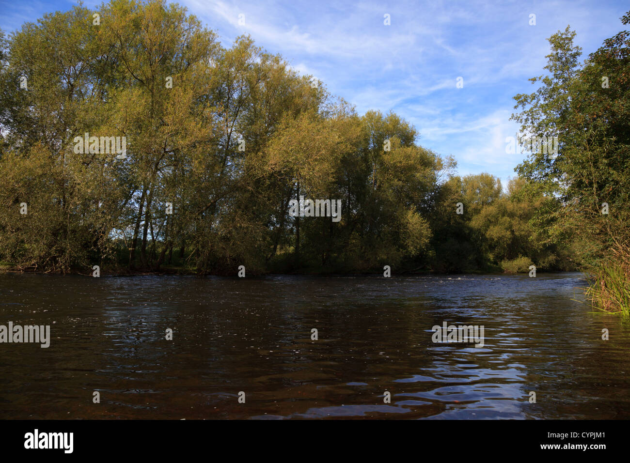 The River Dee at Ty Mawr Country Park - Stock Image
