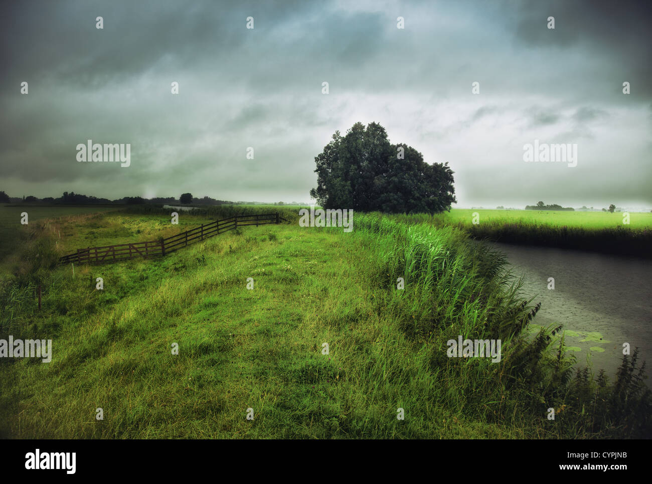rain weather landscape  photo - Stock Image